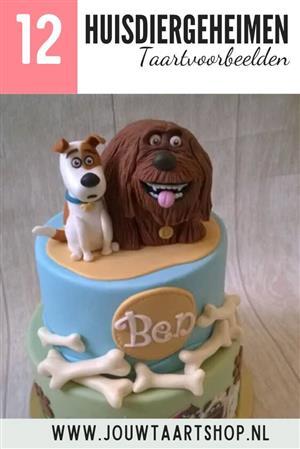 12 voorbeelden huisdiergeheimen taarten