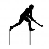 Taarttopper - Hockeyer, fig. 1