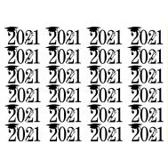 """24x """"Geslaagd 2021"""" op Frosty sheet, fig. 2"""